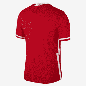 camiseta polonia 2021 away atras